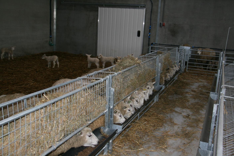 schapenstal wassenaar  u2013 berg stalinrichting